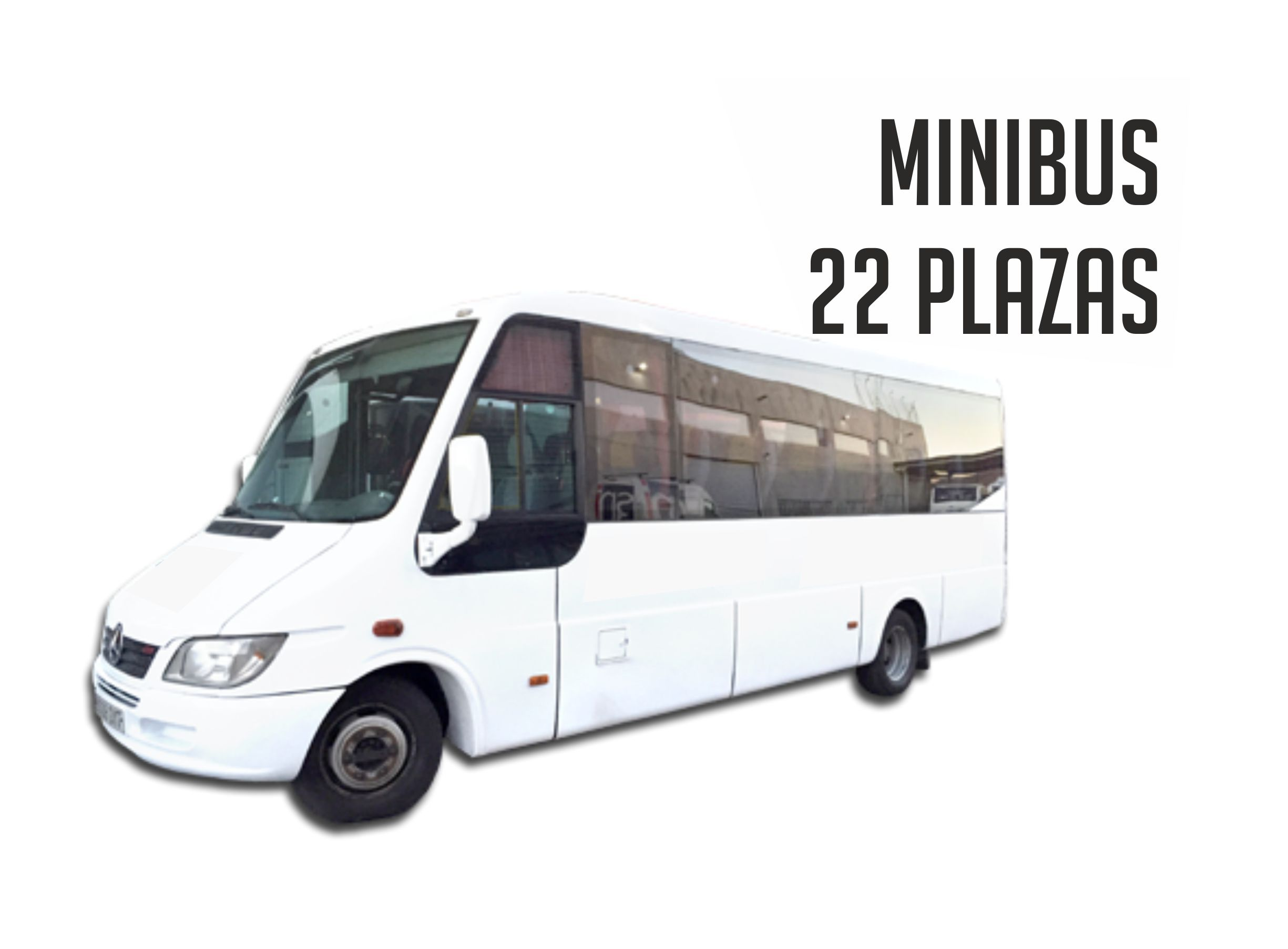 Autobus para despedida en Madrid 22 plazas Paradise Events